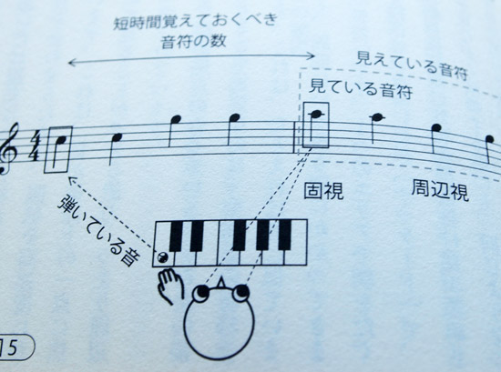 brain-of-pianist-first-play (1)